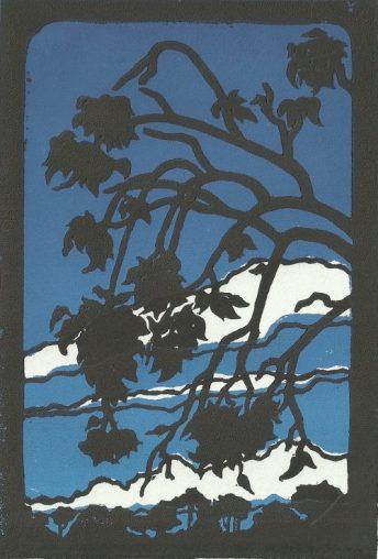 Ventana 18:30 in Blue