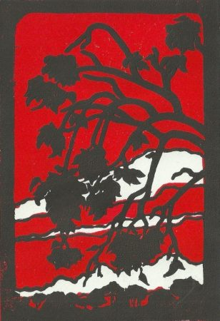 Ventana 18:30 in Red