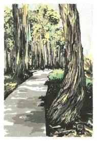 Serrano Creek Park