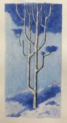 Eyvind Lake Forest Tree