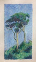 Lakewood Tree