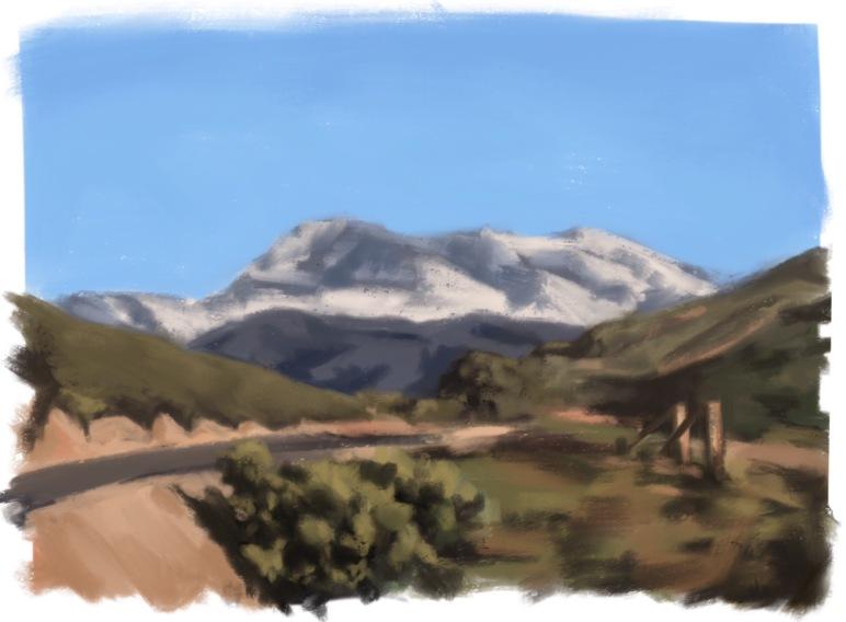 Snowy Saddleback