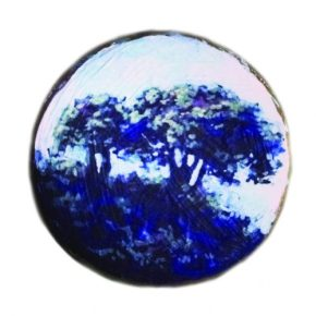 Stonehill Tree